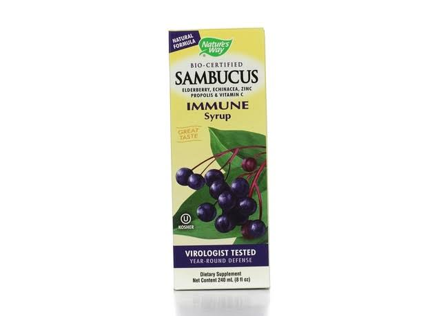 Nature's Way Sambucus Elderberry Immune Syrup - 8oz