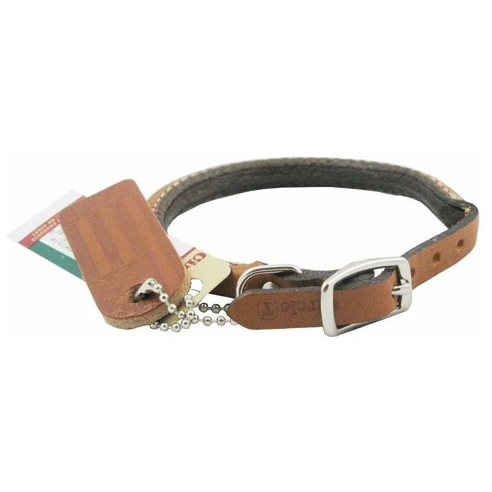Coastal Pet Products Leather Circle T Dog Collar - Oak Tanned