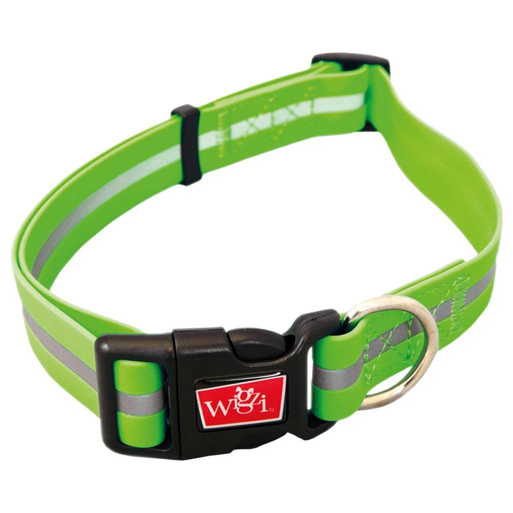 Wigzi Waterproof Sport Collar - Green, Large