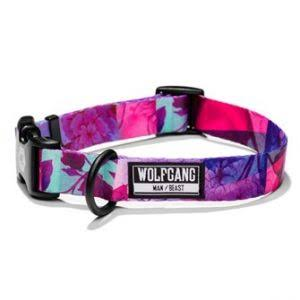 Wolfgang Man & Beast Daydream Dog Collar - Size: Large