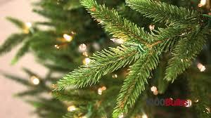 Lifelike Artificial Christmas Trees Canada by Pvc Vs Pe Christmas Trees Youtube