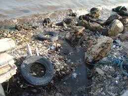 ساهموا في تنظيف بيئتنا !!!!!!!!!!!!!!!!!!! images?q=tbn:ANd9GcR