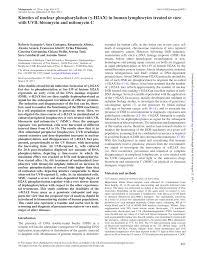 Narrow Band Uvb Lamp Uk by Kinetics Of Nuclear Phosphorylation H2ax In Human Lymphocytes