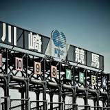 ホワイトフーガ, スパーキングレディーカップ, 予想, 地方競馬, 川崎競馬場, 重賞, 競馬の競走, JBCレディスクラシック