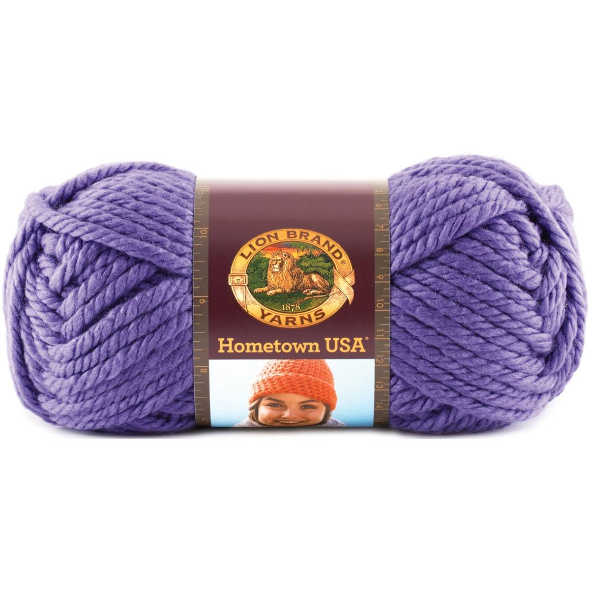 Skeins Lion Brand Hometown USA Yarn - Minneapolis