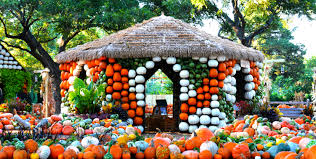 Pumpkin Patch Petting Zoo Dfw by Autumn At The Arboretum Featuring The Wonderful World Of Oz