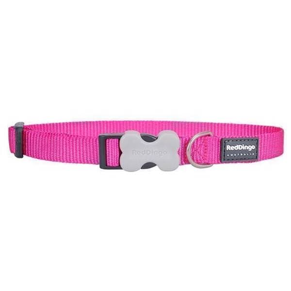 Red Dingo Dog Collar Classic - Hot Pink, Large