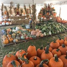 Boos Pumpkin Patch Nebraska City by Art U0026seek Arts Music Culture For North Texas
