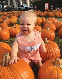 Free Pumpkin Patch Houston Tx by Visiting The Pumpkin Patch The Buzz Magazines