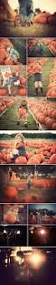 Pumpkin Patch Spokane Valley Wa by This Year I Wanted Something A Little Different From The Same