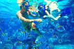 جزيرة الجفتون Giftun Island