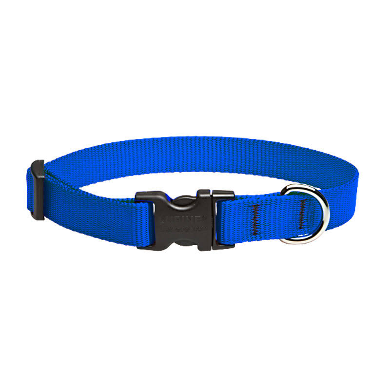 "Lupine Adjustable Dog Collar for Small Medium Dogs - 3/4"" x 9-14"", Blue"