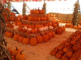 Pumpkin Patch Pueblo County by Upcoming Events And Things To Do In L A With Kids L A Parent
