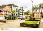 image de Alto Jequitibá Minas Gerais n-9