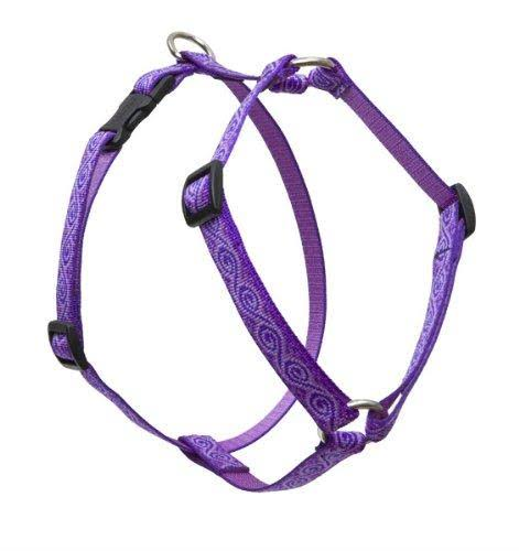 "Lupine Jelly Roll Roman Dog Harness - 3/4"" x 14-24"""