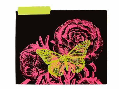 Pec Girls Butterfly File Folder
