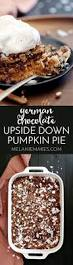Cake Mix And Pumpkin by Best 25 Chocolate Pumpkin Cake Ideas On Pinterest Pumpkin Roll