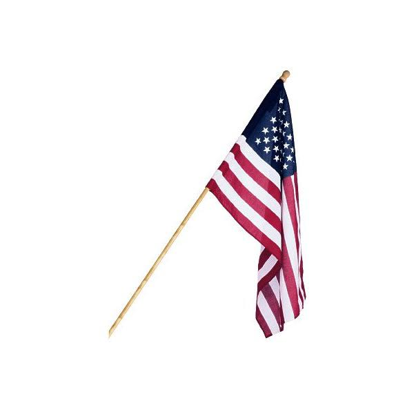 Annin Flagmakers Flag & Pole Stand, US Banner