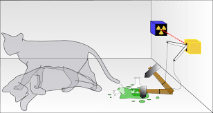 Schrodinger's Cat Experiment Illustrated
