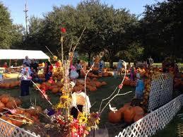 Free Pumpkin Patch Houston Tx by Pumpkin Patch U2013 St Catherine Of Sienna Episcopal Church