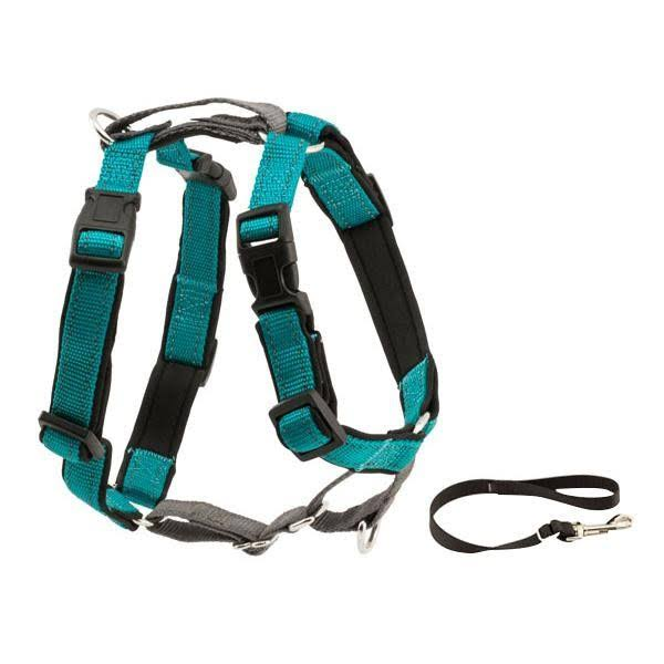 PetSafe 3 in 1 Dog Harness - XSmall, Teal