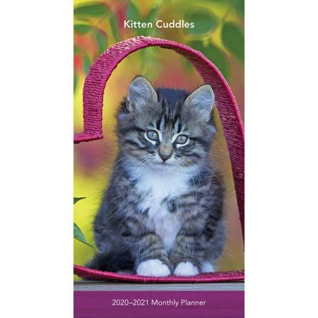 BrownTrout Calendars Kittens Two Year Pocket Planner FSC Certified Paper All Major & Significant Holidays