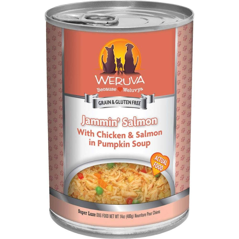 Weruva Grain Free Jammin' Salmon Canned Dog Food - Chicken & Salmon in Pumpkin Soup