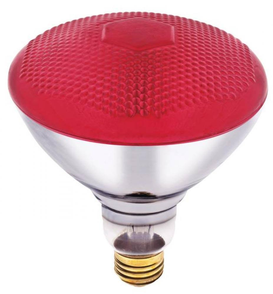 Westinghouse Coloured Floodlight Light Bulb - Red, 100W