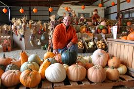 Pas Pumpkin Patch 2017 by Fall Colors Shine At Paul U0027s Pumpkin Patch In Frogtown