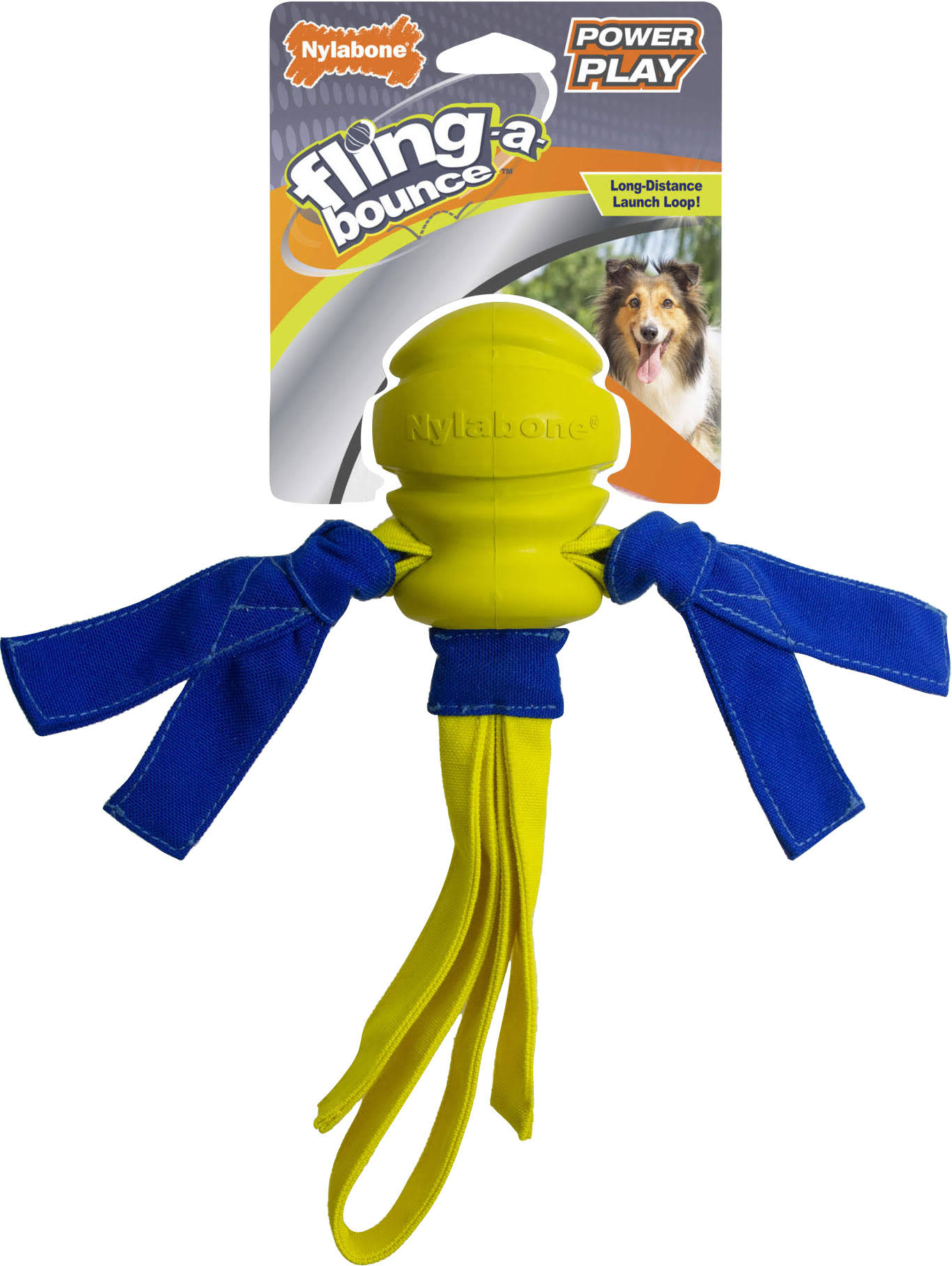 Nylabone Power Play Fling-A-Bounce Dog Toy