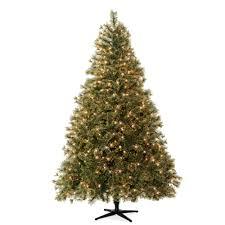 Christmas Tree Amazonca by Celebrate It Pre Lit Christmas Trees 7 5 Ft Pre Lit Jasper