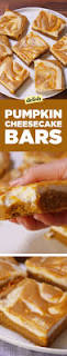 Pumpkin Spice Snickerdoodles Pinterest by Best 25 Pumpkin Cheesecake Ideas On Pinterest Pumpkin