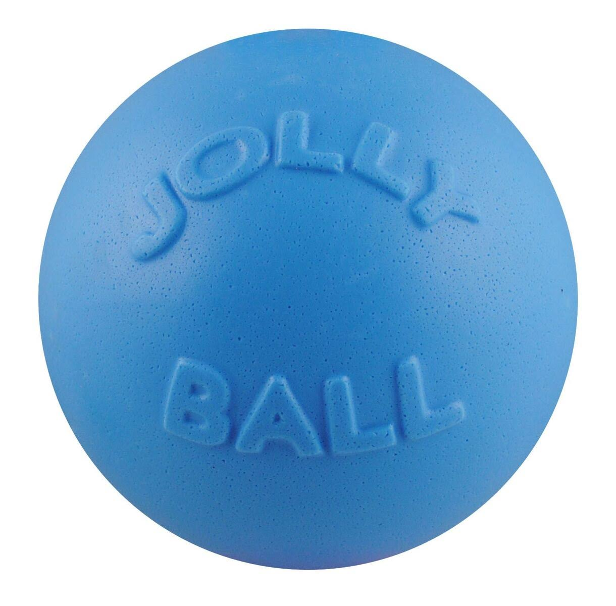 Jolly Pets Bounce-N-Play Ball Dog Toy - Blueberry