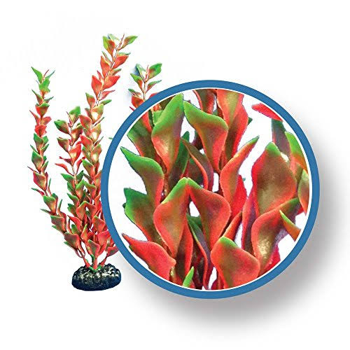 Weco Products Weco Freshwater Pro Series Red Ludwigia Ornament Tropical Weighted Base 6 inch