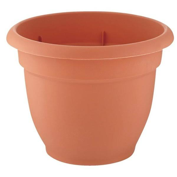 Bloem Terracotta Clay Resin Ariana Planter - 10""
