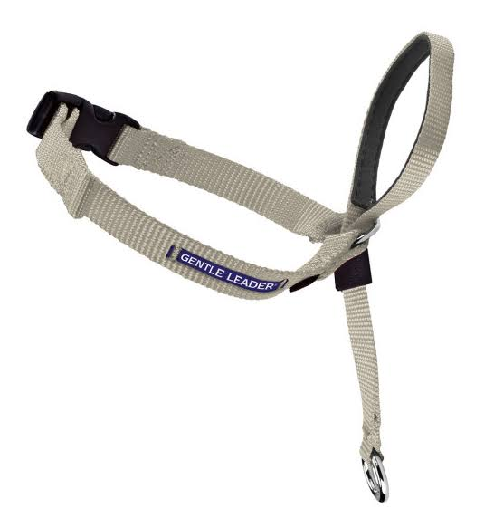 PetSafe Gentle Leader Headcollar - Medium