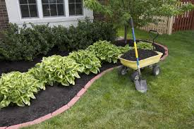 Flowers For Flower Beds by Diy Re Do A Tired Flower Bed