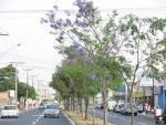 imagem de Aparecida de Goiânia Goiás n-21