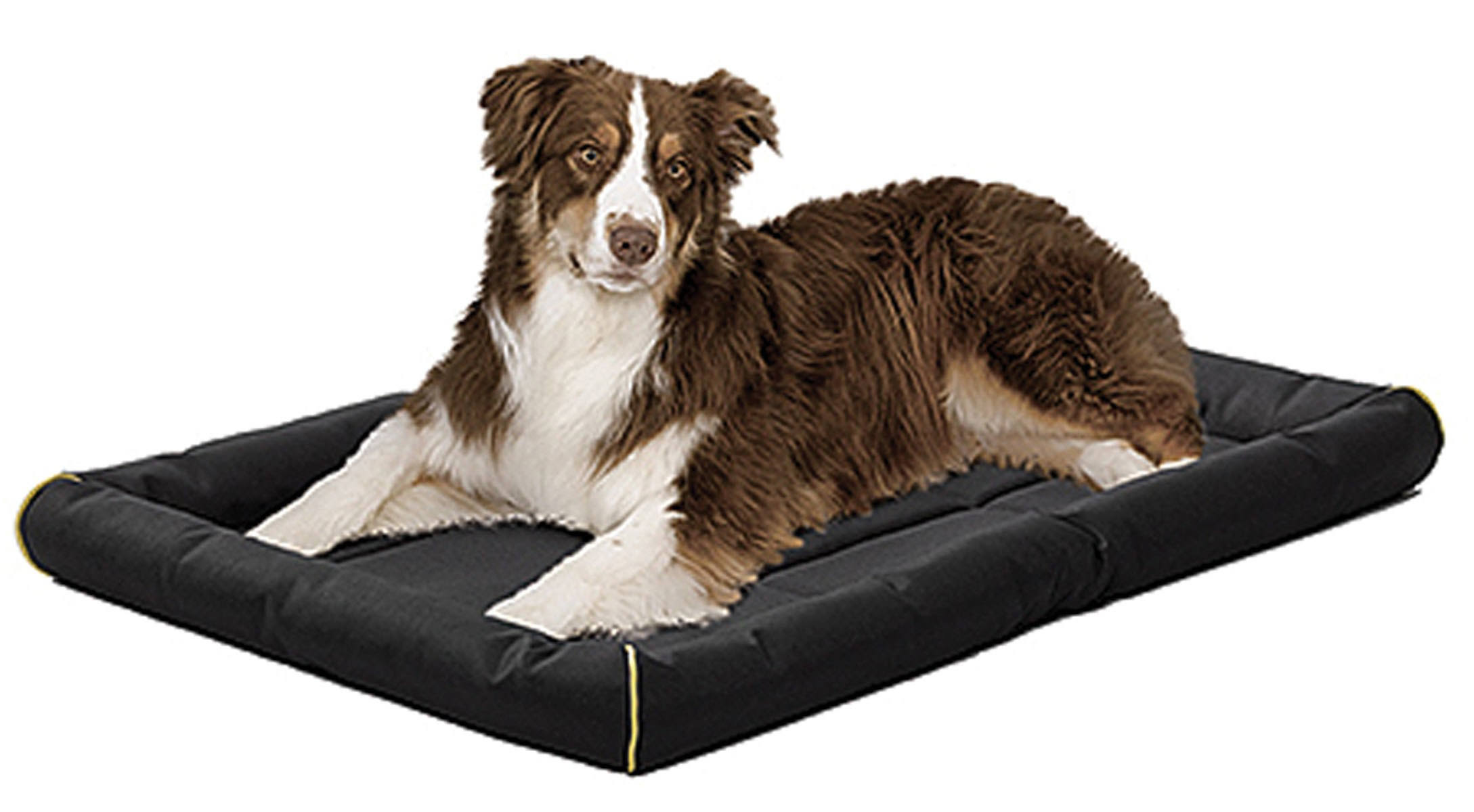 Midwest Pets Quiet Time Maxx Pet Bed - Black, 36""
