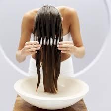 Pumpkin Seed Oil Prostate Side Effects by Hair Loss Treatment Using Pumpkin Seed Oil Pumpkin Seed Oil