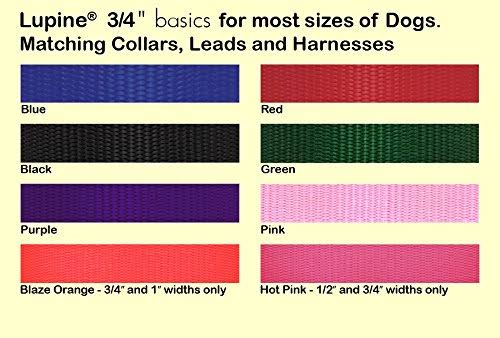 LupinePet Basics 3 4 Pink 14-20 Martingale Collar for Medium and Larger Dogs