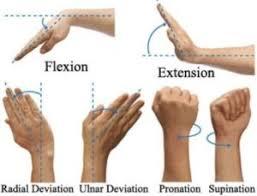 Nervio mediano, enfermedades, patologías
