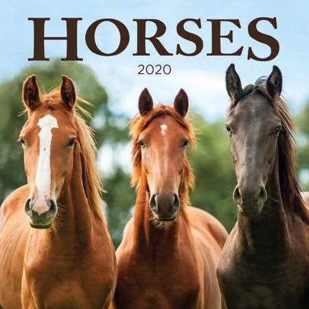 Turner Licensing Horses 2020 Mini Wall Calendar