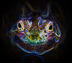 Psychedelic Frog by ~Tripper67 on deviantART