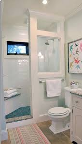 Basement Bathroom Designs Plans by Best 25 Small Basement Bathroom Ideas On Pinterest Basement