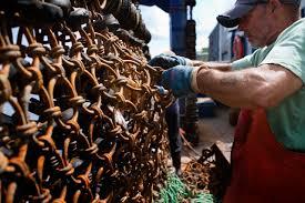 Deadliest Catch Boat Sinks Crew by New England Fish Are Real U0027deadliest Catch U0027 In America Wbur