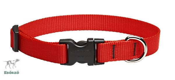 Lupine Adjustable Dog Collar - Red