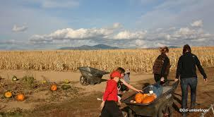Pumpkin Patch Spokane Valley Wa by Washington Drfumblefinger U0027s Adventures Of A Lifetime