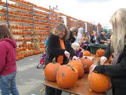 Pumpkin Fest Highwood by The Great Highwood Pumpkin Festival Tips For The Best Visit Ever