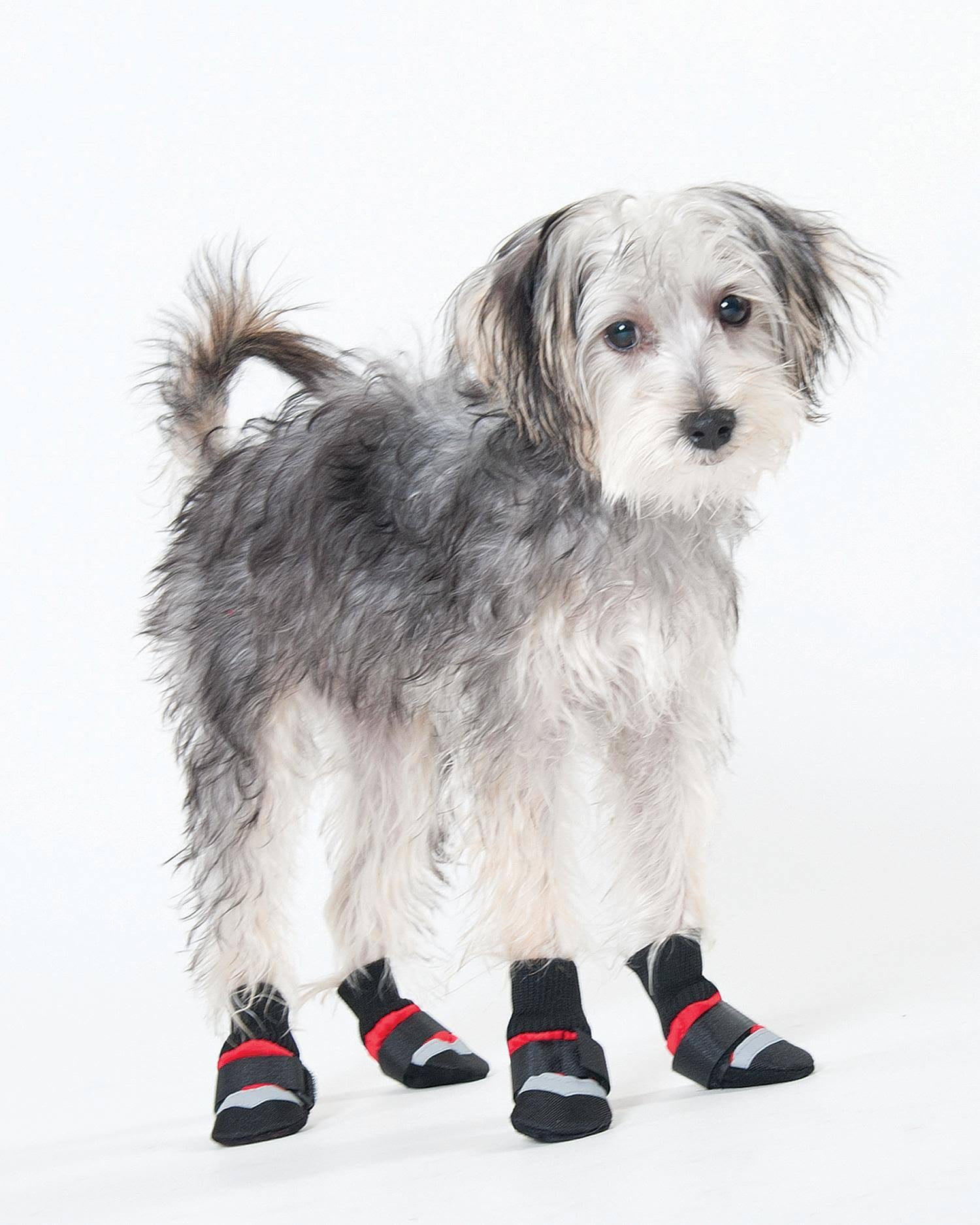 Spot Ethical Lookin Good Extreme All Weather Dog Boots - Red, X-Large
